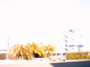 Sunp0005_3